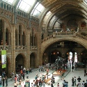 London Natural History Museum - Neidinger Lecture